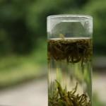 Grüner Tee ist gut für die Gesundheit